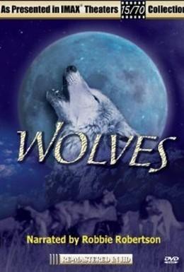 Постер фильма Волки (1999)