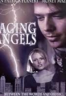 Разгневанные ангелы (1995)
