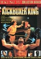 Король кикбоксинга (1991)