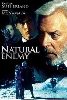Постер фильма Тайный враг (1996)