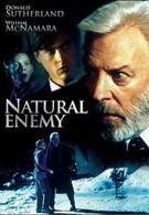 Тайный враг (1996)