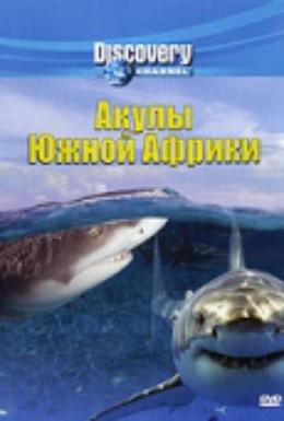 Постер фильма Акулы Южной Африки (2001)