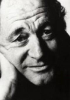 Мишель Фортен